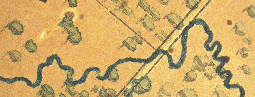 Detail of map